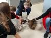 Apsilankėme Katinų ir Egzotinių gyvūnų muziejuose