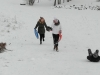 Sausio 21 diena Pasaulinė sniego diena